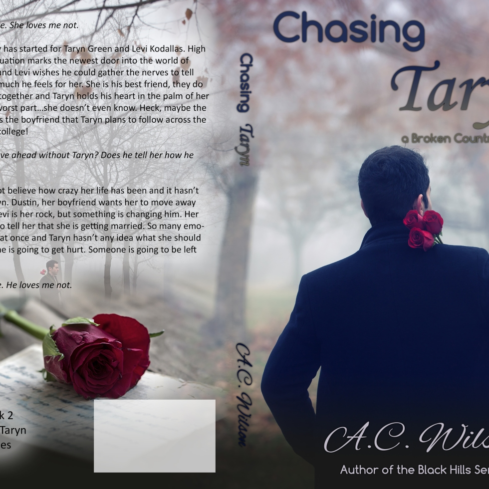 Chasing Taryn Cover designed by RSDesignplace